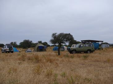Camp at the sterilisation campaign